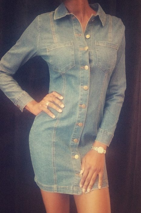 Standard Denim Button Up Dress - The Standard Detroit